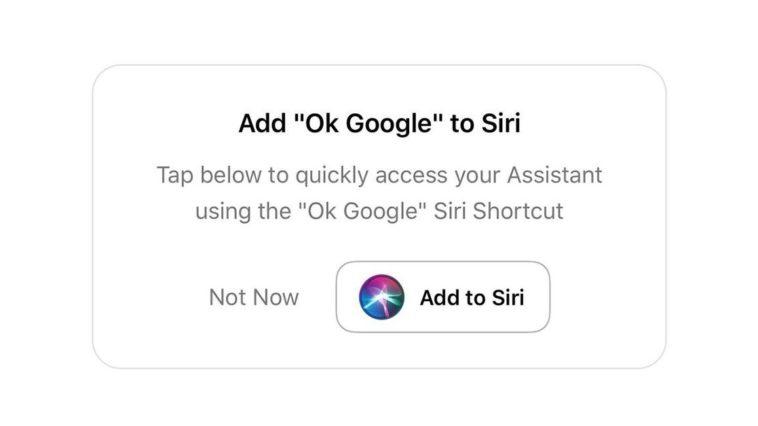 Ok Google Iphone Cover
