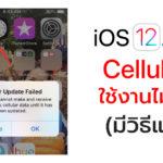 Ios 12 1 2 Cellular Issue