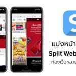 Split View By Split Web Browser