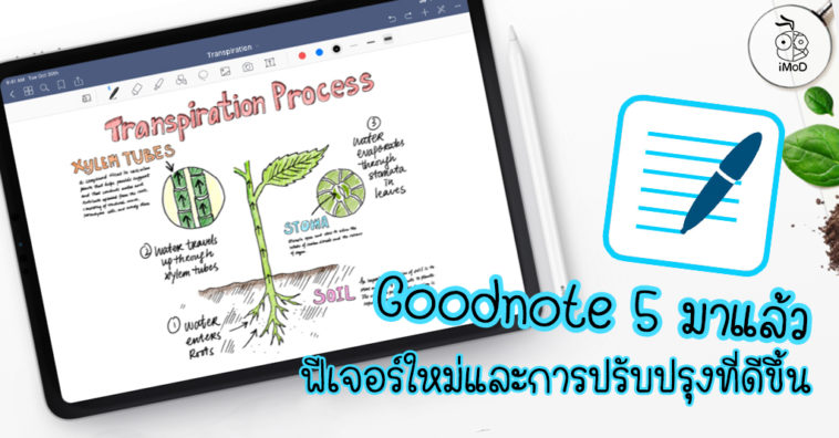 Goodnote 5 New Version Upgrad