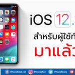 Ios 12 1 3 Released