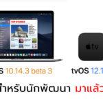 Macos 10 14 3 Beta 3 And Tvos 12 1 2 Beta 3 Seed
