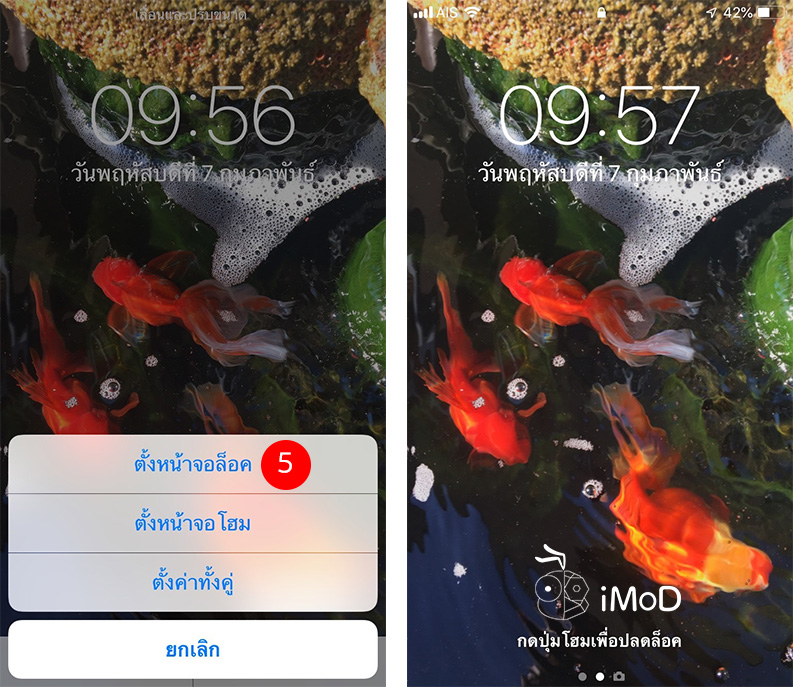 How To Shoot Live Photos To Set As Wallpaper 3