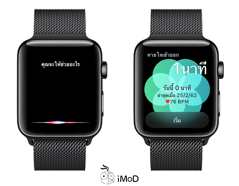 How To Enable Raise To Speak With Siri Apple Watch Watchos 5 2