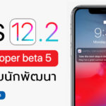 Ios 12 2 Developer Beta 5 Seed