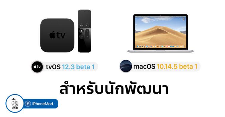 Macos 10 14 5 Beta 1 And Tvos 12 3 Beta 1 Seed