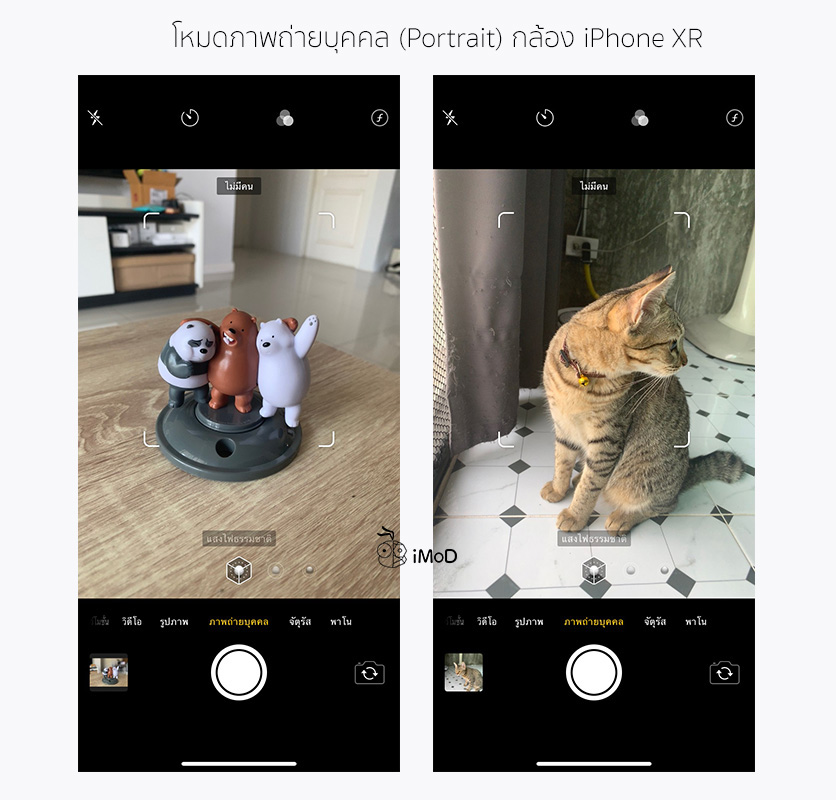 How To Take Portrait Mode With Things Pet On Iphone Xr By Halide 11