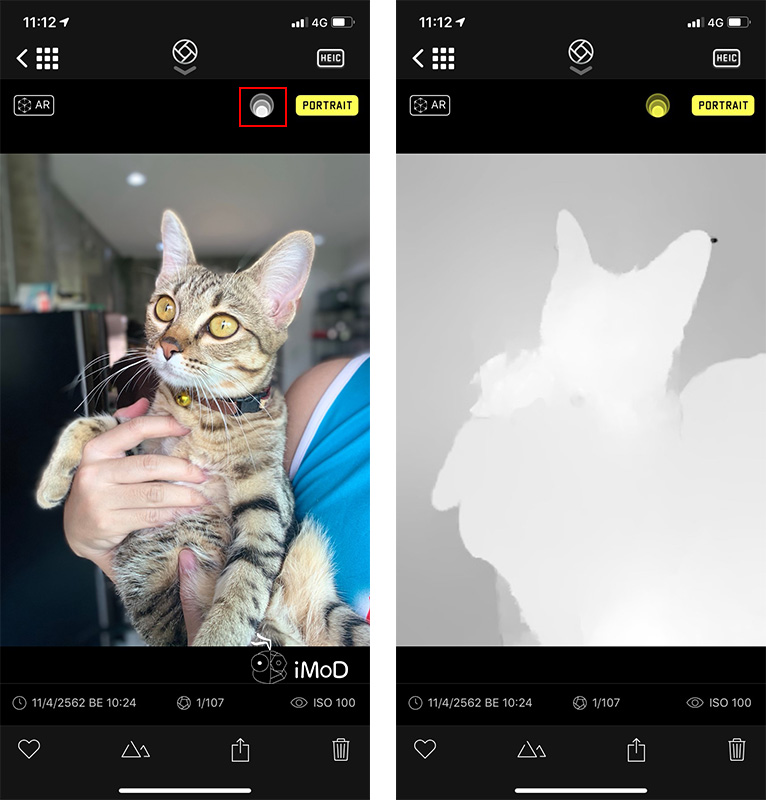 How To Take Portrait Mode With Things Pet On Iphone Xr By Halide 7