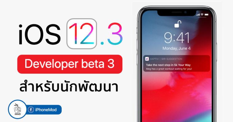 Ios 12 3 Developer Beta 3 Seed