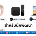Watch Os 5 2 1 Beta 1 And Tvos 12 3 Beta 2 Mac Os 10 14 5 Beta 2 Seed