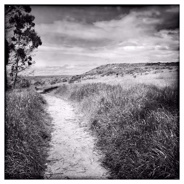 Apple Photographer Rachael Short Wandering Path Monastery Beach 05162019