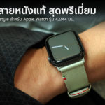 Cozistyle Striped Leather Apple Watch Band Lilly White Color Review