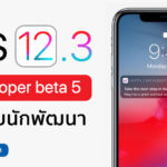 Ios 12 3 Developer Beta 5 Seed