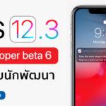 Ios 12 3 Developer Beta 6 Seed