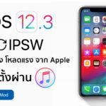 Ios 12 3 Ipsw