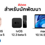 Watch Os 5 2 1 Beta 5 And Tvos 12 3 Beta 5 Mac Os 10 14 5 Beta 5 Seed Cover