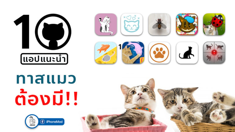 Cover Apps Cats
