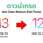 How To Downgrade Ios 13 Public Beta To Ios 12 3 1