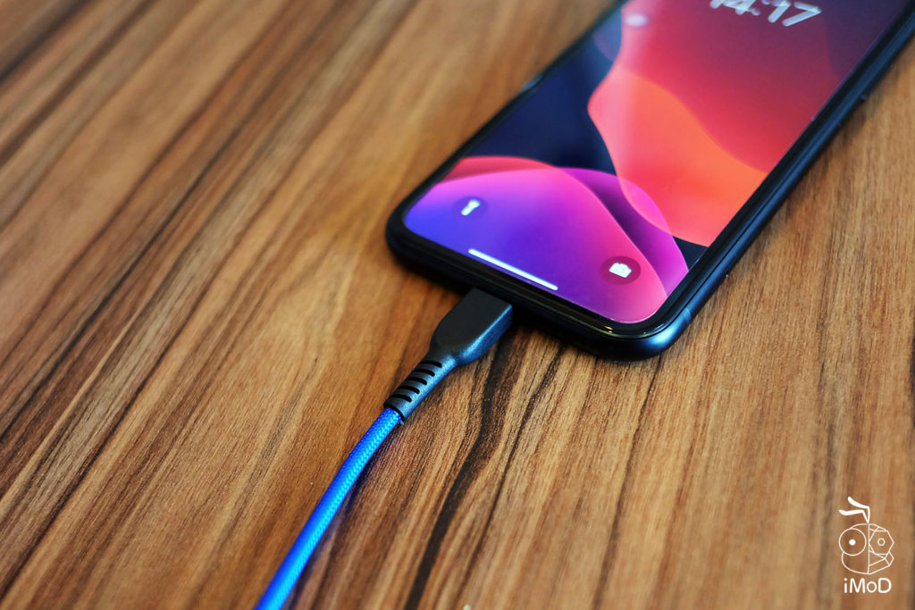 Rizz Kavlar Strong Cable Review 7