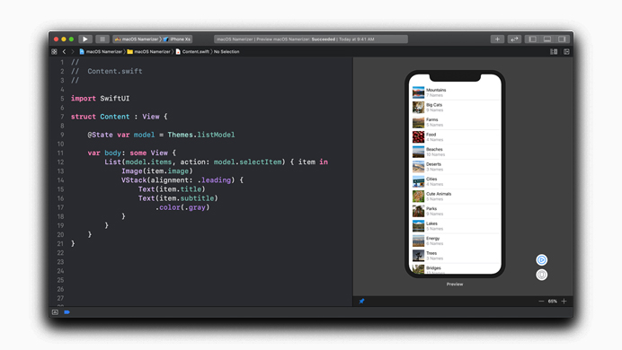 Swiftui Ui Framwork For Developer 1