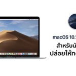 Apple Release Macos 10 14 6 Beta 5 Mojave Beta 5 Developer