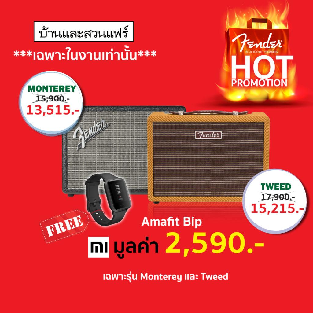 Fender Thailand Promotion Baan Lae Suan Fair 2019 1