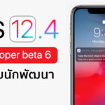 Ios 12 4 Developer Beta 6 Seed