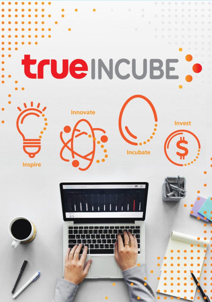 True Incube Start Up Thailand 2019 4