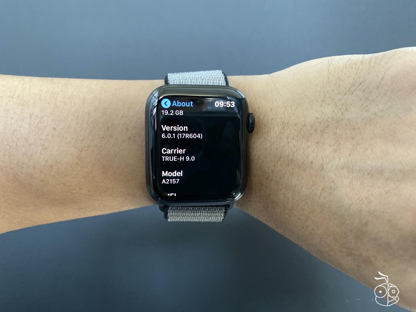 Apple Watch Series 5 Watchos 6.0.1