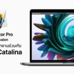 Pixelmator Pro V 1 5 Avalon Update Support Macos Catalina