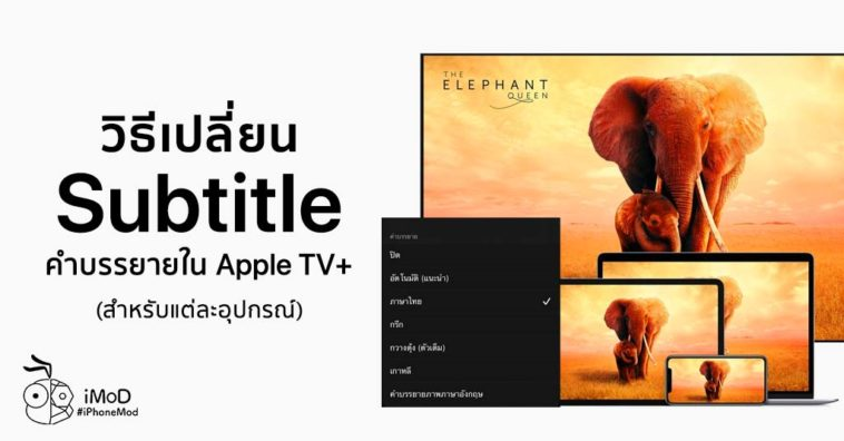 How To Change Subtitle Apple Tv Plus In Apple Tv App