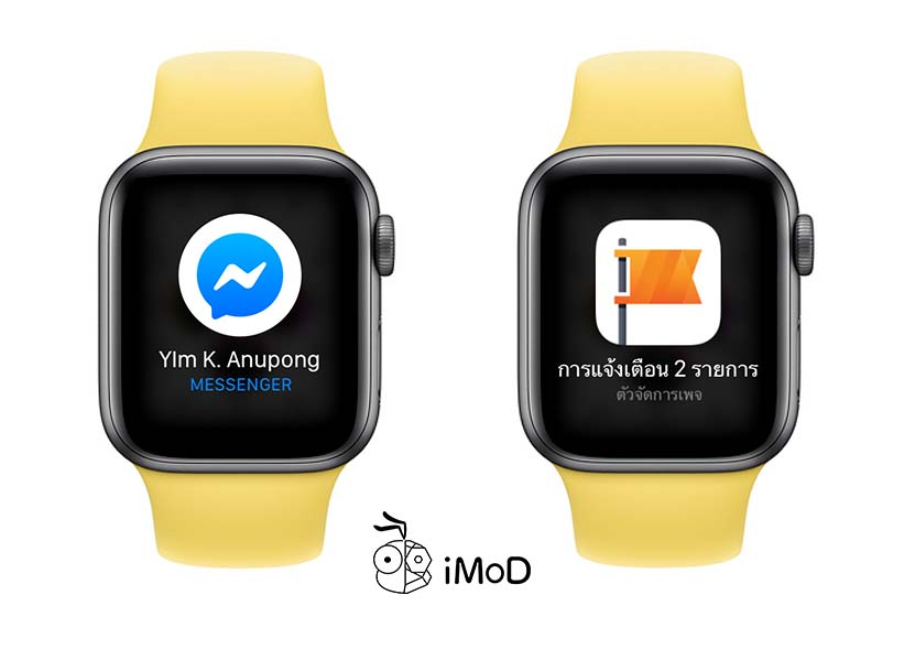 How To Setting Notification Privacy In Apple Watch 3