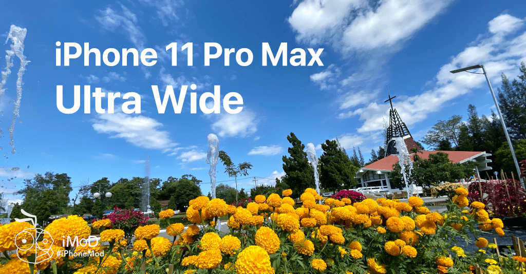 Iphone 11 Pro Max Ultrawide Outdoor Photo