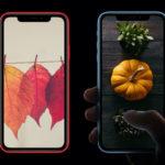 Iphone Wallpaper Thanksgiving