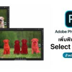 Adobe Photoshop For Ipad Update Version 1 1