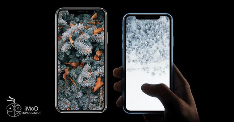 Iphone Beginning Of Winter Wallpaper