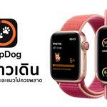 Stepdog Walking Couht For Apple Watch