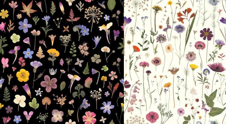 Helen Ahpornsiri Flowermeadow