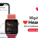 How To See Hear Rate Data History Iphone Apple Watch