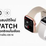 Apple Developing Detect Blood Oxygen On Apple Watch