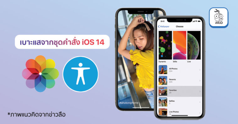 Wallpaper Category Setting Accessibility Improve And More Ios 14 Code Report